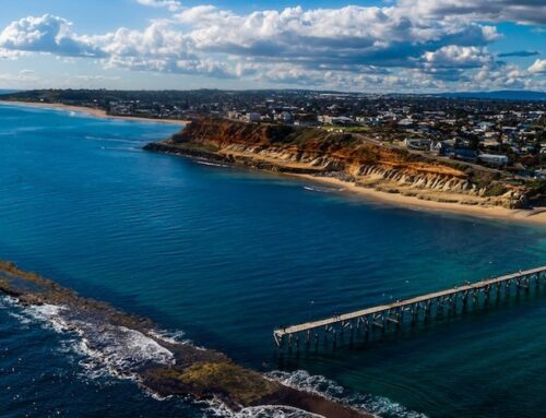 Exciting opportunity for an experienced Optometrist to join as a Joint Venture Partner at Specsavers Noarlunga, SA